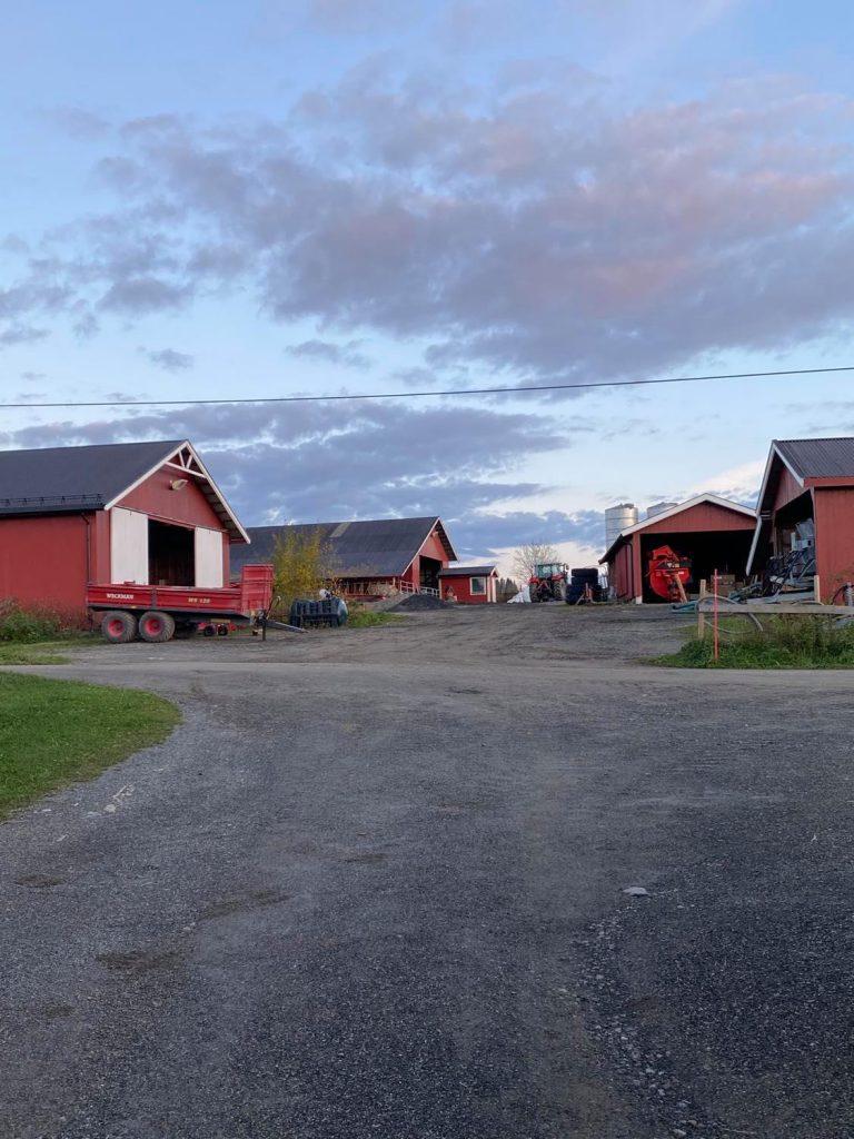 Traktorplassen